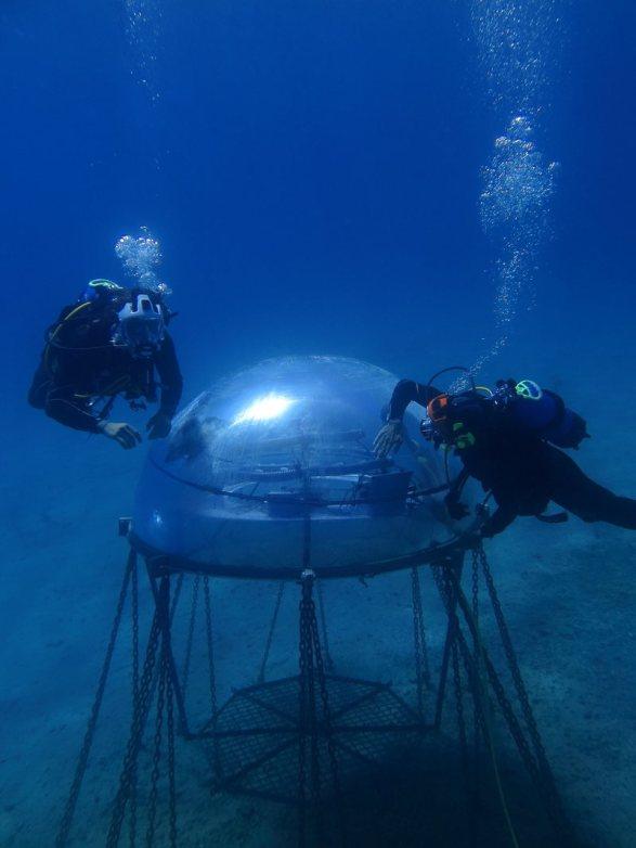 underwater farm